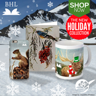 BHL Holiday Collection