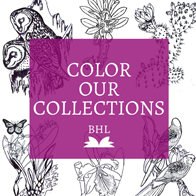 Color Our Collections