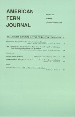 American fern journal